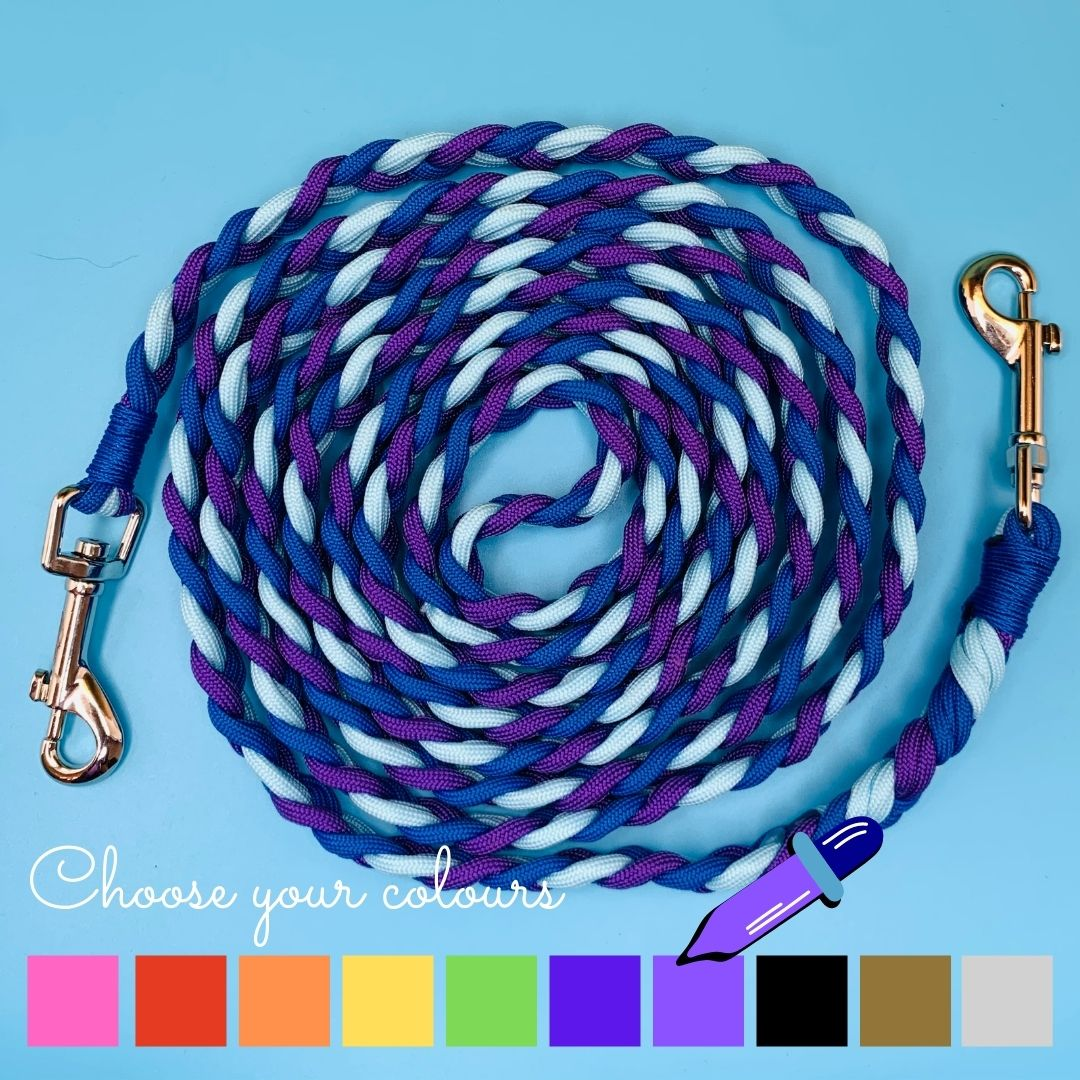 Riding Reins with 2x Clasps